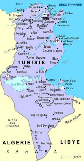 image carte_tunisie2.jpg (0.3MB)